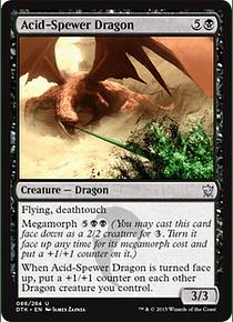 Acid-Spewer Dragon - DTK