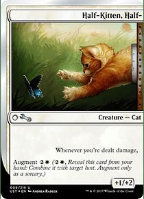 Half-Kitten, Half- - UST