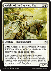 Knight of the Skyward Eye - A25