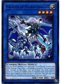 Paladin of Storm Dragon - CYHO-EN031 - Rare