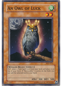 An Owl of Luck - PGD-073 - Common