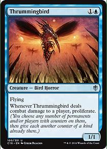 Thrummingbird - C16 - U