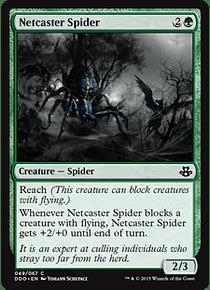 Netcaster Spider - DDO - C