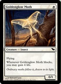 Goldenglow Moth - SDM - C