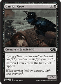 Carrion Crow - M15 - C