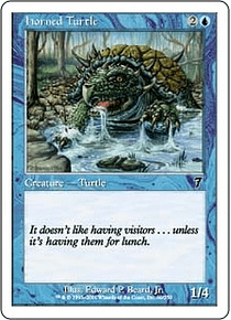 Horned Turtle - 7TH - C