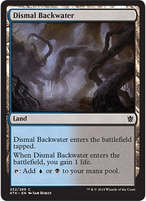 Dismal Backwater - KTK - C