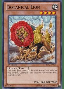 Botanical Lion - BP02-EN074 - Common
