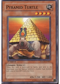 Pyramid Turtle - SDZW-EN007 - Common
