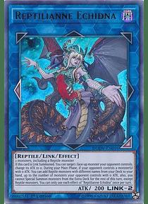 Reptilianne Echidna - DUOV-EN016 - Ultra Rare