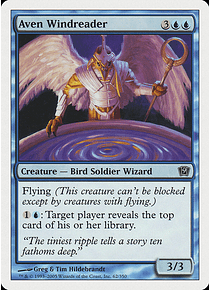 Aven Windreader - 9TH - C