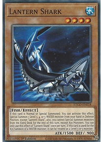 Lantern Shark - ETCO-EN018 - Common