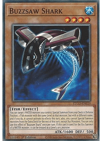 Buzzsaw Shark - ETCO-EN019 - Common