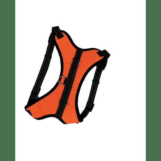 Arnés Acolchado XL