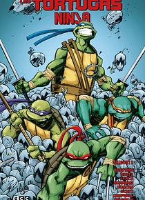 SEGUNDA MANO Las Tortugas Ninja vol. 2