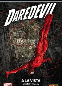 Daredevil 6. A la vista