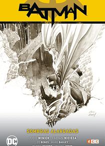 Batman vol. 9: Sombras alargadas (Batman Saga - Renacido parte 4)