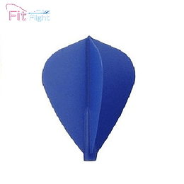 Fit Flight Kite