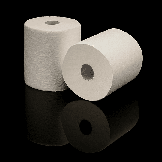 TOALLA PAPEL 100MTX2ROLLO PACK