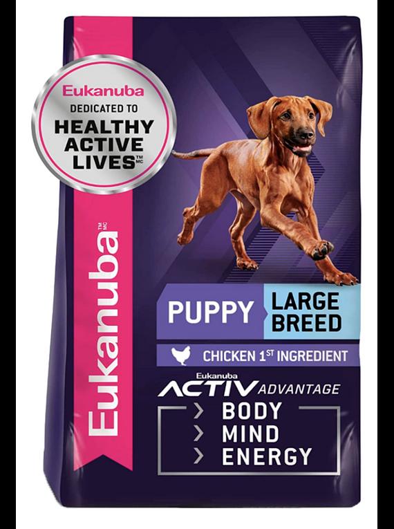 Eukanuba - Puppy - Large Breed