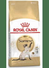 Royal Canin - Siames Adulto