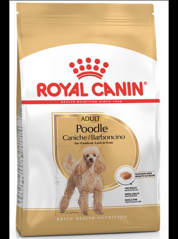 Royal Canin - Poodle Adulto