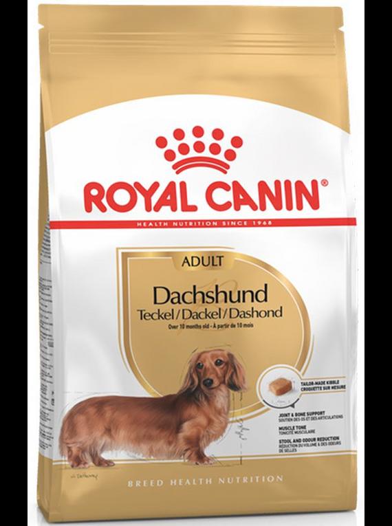 Royal Canin - Dachshund Adulto