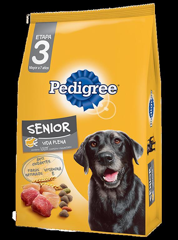 Pedigree - Senior - 21KG