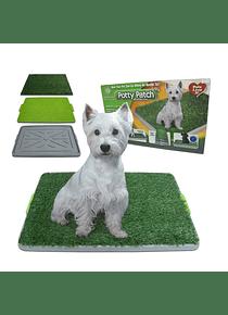 Baño Sanitario Para Perros