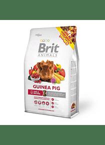 Brit Animals - Guinea Pig