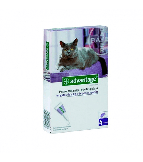 Advantage Gatos 4 - 8 Kg