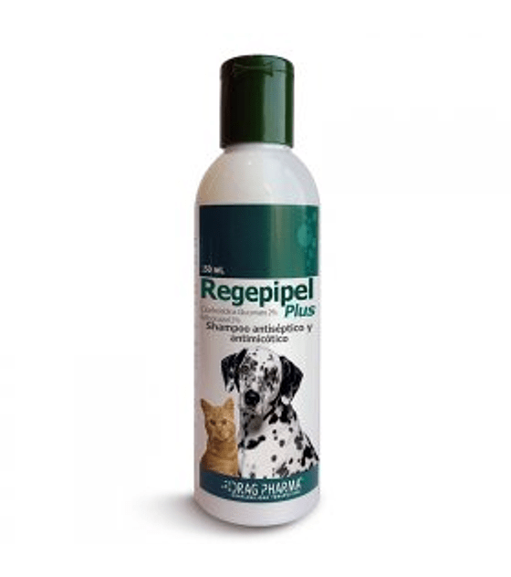 Shampoo Regepipel, 100 ml