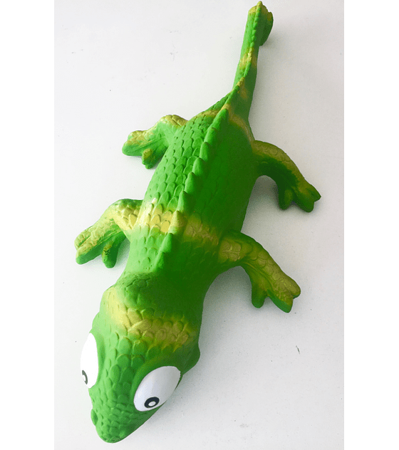 Iguana, 40 cm largo