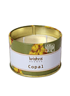 Vela Aromaticas Lata Krishna  Copal