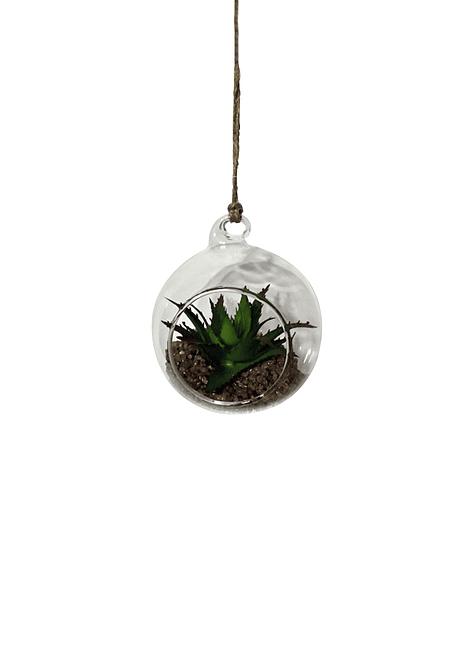 Esfera Vidrio con planta