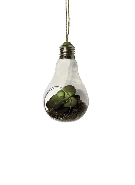 Colgante en forma de Ampolleta con planta