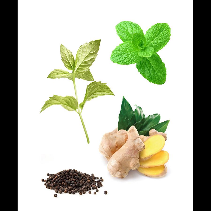 Óleo Essencial Tamer Roll-On - 10 ml   Mistura Digestiva