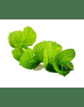 Óleo Essencial de Peppermint (Hortelã-Pimenta) - 15 ml