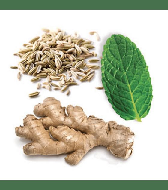 Óleo Essencial ZenGest - 15 ml   Mistura Digestiva