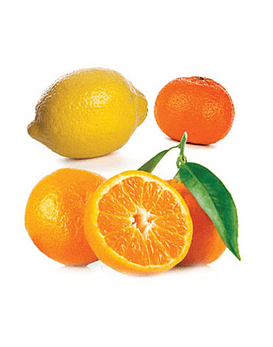 Óleo Essencial Citrus Bliss - 15 ml | Mistura Revigorante