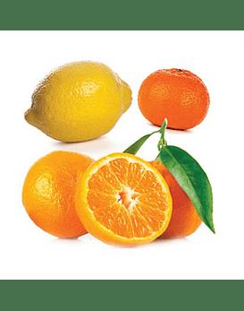 Óleo Essencial Citrus Bliss - 15 ml | Mistura de Vitalidade