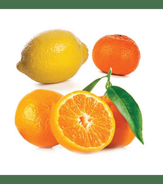 Óleo Essencial Citrus Bliss - 15 ml   Mistura Revigorante