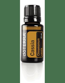 Óleo Essencial de Cássia (Canela-Chinesa) - 15 ml