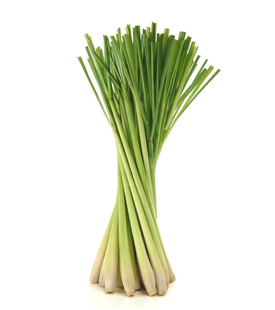 Óleo Essencial de Lemongrass (Erva-Príncipe) - 15 ml
