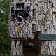 Soporte Árbol Browning para Cámara Trampa - Image 4