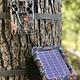 Correas Árbol Browning Tree Straps para Cámara Trampa - Image 5