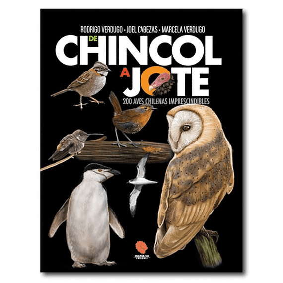 De Chincol a Jote: 200 Aves Chilenas Imprescindibles- Image 1