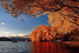 Otoño en Nueva Zelanda - imagen galería 5