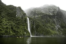 Primavera en Nueva Zelanda - imagen galería 6