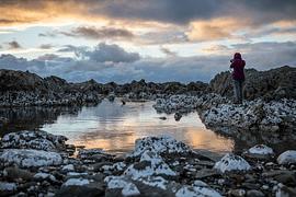Otoño en Nueva Zelanda - imagen galería 8